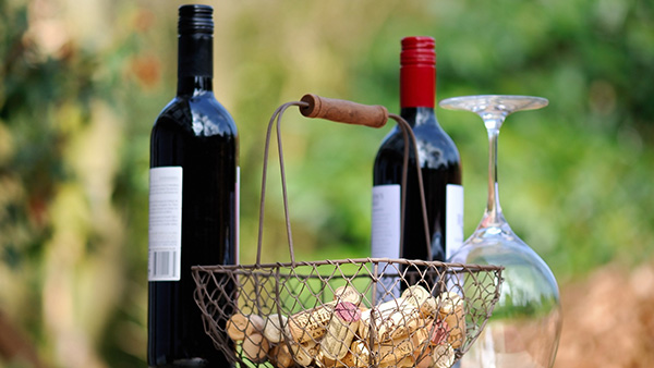 Weinwanderung am Lambsheimer Weiher